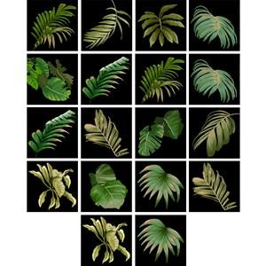 Adesivo para Azulejo Costa Rica Preto e Verde