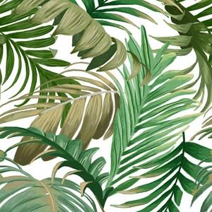 Papel de Parede Costa Rica Branco e Verde