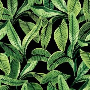 Papel de Parede Paisagem tropical Verde e Preto I